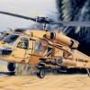 UH 60 Desert Hawk Model Set