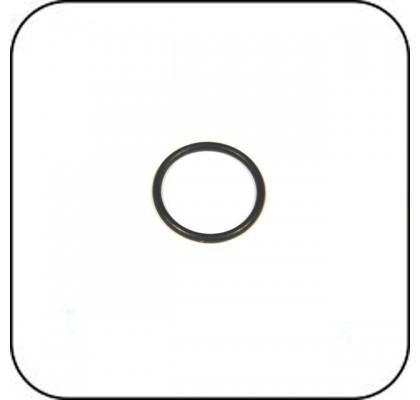GD O-Ring x 2