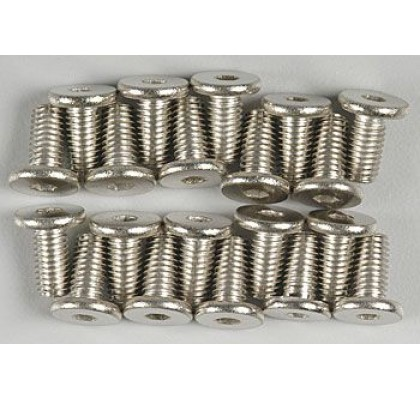 Engine Mount Screws (20)