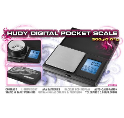 Professional Digital Pocket Scale 300g/0.01g